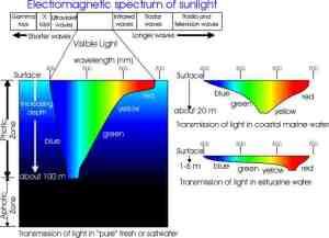 electrospectruminwater