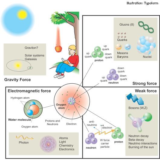 Menurut model standar ada empat gaya fundamental yang bekerja di alam. Zarah di alam semesta ini berinteraksi melalui gaya-gaya yang dinamakan gaya fundamental.